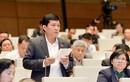 Ông Phạm Phú Quốc làm gì sau bị bãi miễn ĐBQH?