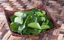 Ba loại rau gia vị ở Việt Nam rẻ bèo,