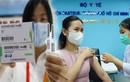 Vắc xin Sinopharm: Mỗi mũi tiêm đều quý, an toàn phòng dịch… sao phải ngại?!