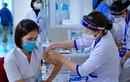 Bao nhiêu triệu liều vắc xin về Việt Nam tháng 9,10?