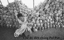 Khmer đỏ - Chế độ tàn ác nhất trong lịch sử loài người