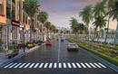 Tuần châu Marina - bến đỗ sầm uất trên con đường di sản