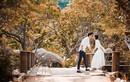 Lộ danh sách khách mời khủng tại đám cưới Á hậu Tú Anh