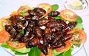 Kinh dị với món ăn từ gián - đặc sản của Trung Quốc