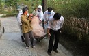 Phát hiện thêm ổ dịch tả lợn Châu Phi mới tại Thừa Thiên - Huế