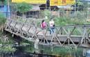 """Người Sài Gòn liều mình qua cây cầu """"đưa võng"""""""