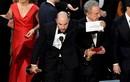 Sự thật sau vụ xướng nhầm tên phim giành giải ở Oscar 2017