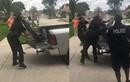 Video: Cá sấu bị trói chặt vẫn tung đòn hiểm khiến cảnh sát choáng váng