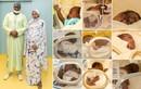 Mẹ bỉm sữa sinh một lần 9 con, ngày dùng hết 100 cái tã