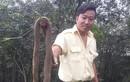 Hàng trăm con rắn bị thả ra khu dân cư Đồng Nai