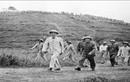 Hình ảnh tư liệu muôn đời giá trị về Chủ tịch Hồ Chí Minh