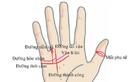 """Bàn tay có dấu hiệu """"độc - lạ"""" này: Chủ nhân được Thần Tài sủng ái"""
