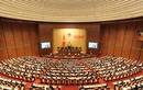 Kết quả sơ bộ bầu cử ĐBQH khóa XIV tại Hà Nội