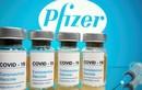 Việt Nam sẽ có 31 triệu liều vaccine Pfizer trong năm nay