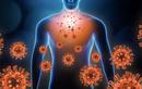 COVID-19: Thuận tự nhiên virus phải suy yếu… liệu Delta có tàn?