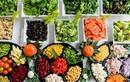Những thực phẩm ít ai ngờ có thể là nguyên nhân gây táo bón
