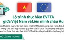 Lộ trình thực hiện Hiệp định Thương mại tự do Việt Nam-EU