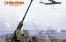 Infographic: Vũ khí Việt Nam trong chiến dịch ĐBP trên không (7)