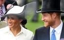 Meghan Markle và chặng đường sau một tháng trở thành công nương hoàng gia Anh