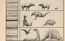 Kỳ thú những biểu đồ khoa học từ thế kỷ 19