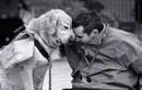 Vì sao loài chó trung thành với con người?