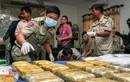 Đằng sau chiến dịch chống ma túy ở Campuchia