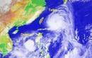 """Trung Quốc """"thấp thỏm"""" chờ siêu bão Talim và Doksuri…"""