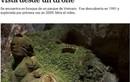 Báo Argentina ca ngợi vẻ đẹp ấn tượng của hang Sơn Đoòng