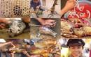 """Loạt ảnh cực sốc về thịt chó Việt khiến Tây """"rụng rời"""""""