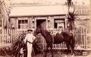 Ảnh hiếm ấn tượng về cuộc sống cuối thế kỷ 19
