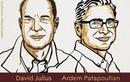 Chân dung hai nhà khoa học Mỹ đoạt giải Nobel Y học 2021
