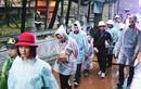 Ảnh: Du khách đội mưa, ùn ùn trẩy hội chùa Hương từ tờ mờ sáng