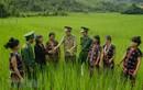 Hình ảnh đẹp, ấn tượng Quân đội Nhân dân Việt Nam