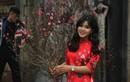 Người Hà Nội diện áo dài, khoe dáng trên phố bích họa Phùng Hưng