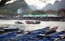 4.000 đò chở khách trẩy hội chùa Hương 2019 có gì đặc biệt?