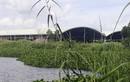 Hơn 300 thai nhi ở nhà máy rác Cà Mau: Tin 'chưa có cơ sở'