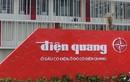 Công ty Bóng đèn Điện Quang dưới thời bà Hồ Thị Kim Thoa làm ăn thế nào?