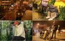 Dân buôn tất tả, mệt nhoài đêm chợ hoa giáp Tết