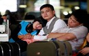 Vietnam Airlines, VietJet Air phải bồi thường 10 tỉ cho khách
