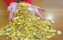Đấu giá 150 kg vàng buôn lậu được định giá 82,5 tỉ đồng