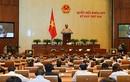 Nghị quyết của Quốc hội phê phán nghiêm khắc ông Vũ Huy Hoàng