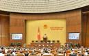 Hôm nay khai mạc Kỳ họp thứ mười, Quốc hội khóa XIV