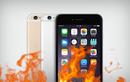 iPhone 6 có nguy cơ hỏng cao nhất trong các dòng iPhone