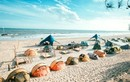 Thiên đường cắm trại biển thu hút giới trẻ Việt