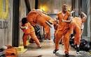 """The Rock"" Dwayne Johnson khoe cơ bắp trong Fast & Furious 8"