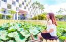 Khám phá hồ sen trong khuôn viên trường đại học 5 sao tại Hà Nội