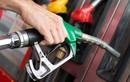 Giá xăng dầu hôm nay 6/7: Phục hồi nhẹ vào cuối tuần nhờ triển vọng cung giảm