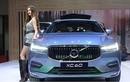 """Volvo XC60 2018 """"chốt giá"""" 2,45 tỷ đồng tại Việt Nam"""