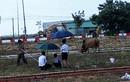 Hàng loạt nguyên cán bộ Eximbank Bà Rịa -Vũng Tàu tiếp tục bị điều tra