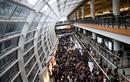 Hong Kong bắt giữ 748 người biểu tình quá khích